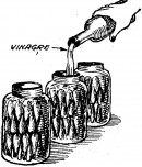encurtidos - como hacer encurtidos de ajies
