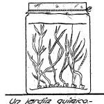 JARDIN quimico – Como hacer un JARDIN QUIMICO