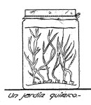 JARDIN qumico - Como hacer un JARDIN QUIMICO