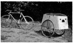 remolque para bicicleta