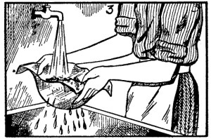 cola de carpintero 3