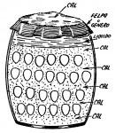 como conservar los huevos frescos