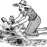 Como hacer abono organico – abonos – fertilizantes