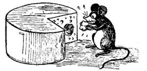 elaboracion de queso de chacra 2