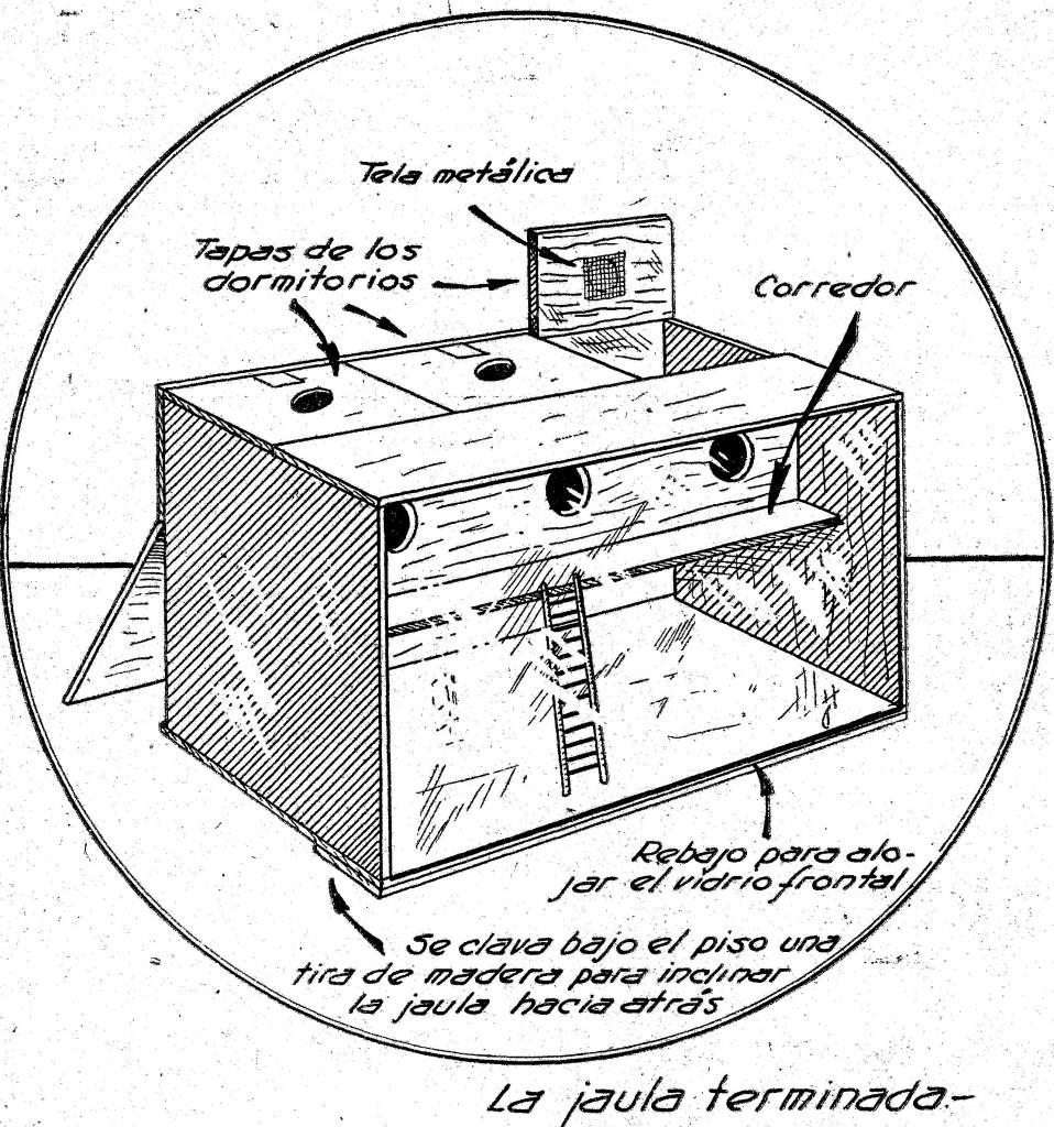 jaula de madera para roedores