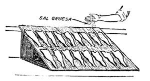 la industria del pescado salado 4