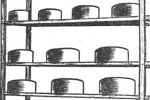 como hacer queso casero 2 de 2 - tipo chubut