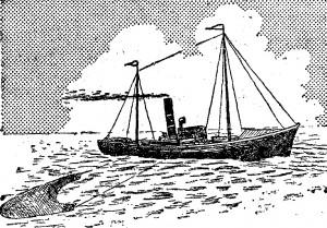 pesca de la merluza