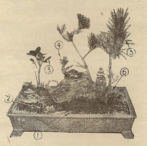 como hacer jardines en miniatura
