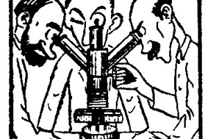 Como hacer – CURIOSIDADES – NOTICIAS CIENTIFICAS 3